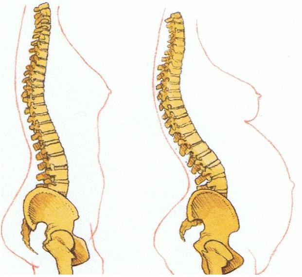 dor nas costas gravidez